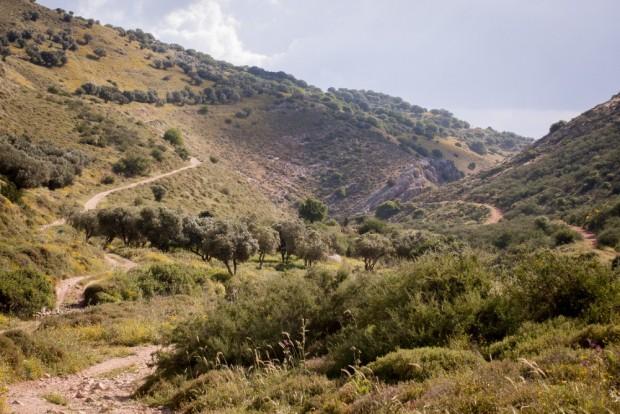 Israel-National-Trail-frankpeti turablog